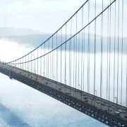 Crossing the Chasm, Building the Disruptive Business