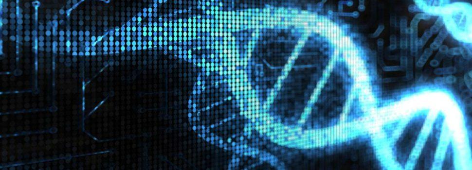 Researchers design a DNA computer that outperforms future Quantum computers