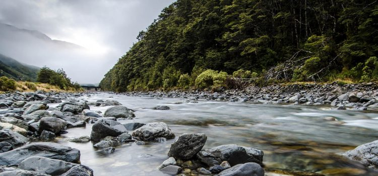 A river in New Zealand was just granted human rights to protect it from pollution