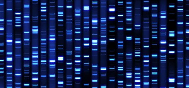 Microsoft will offer DNA storage in the cloud by 2020