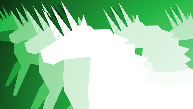 The secrets behind building a Unicorn