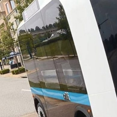 Meet Olli the self driving bus, perfectly disruptive, perfectly purposeful