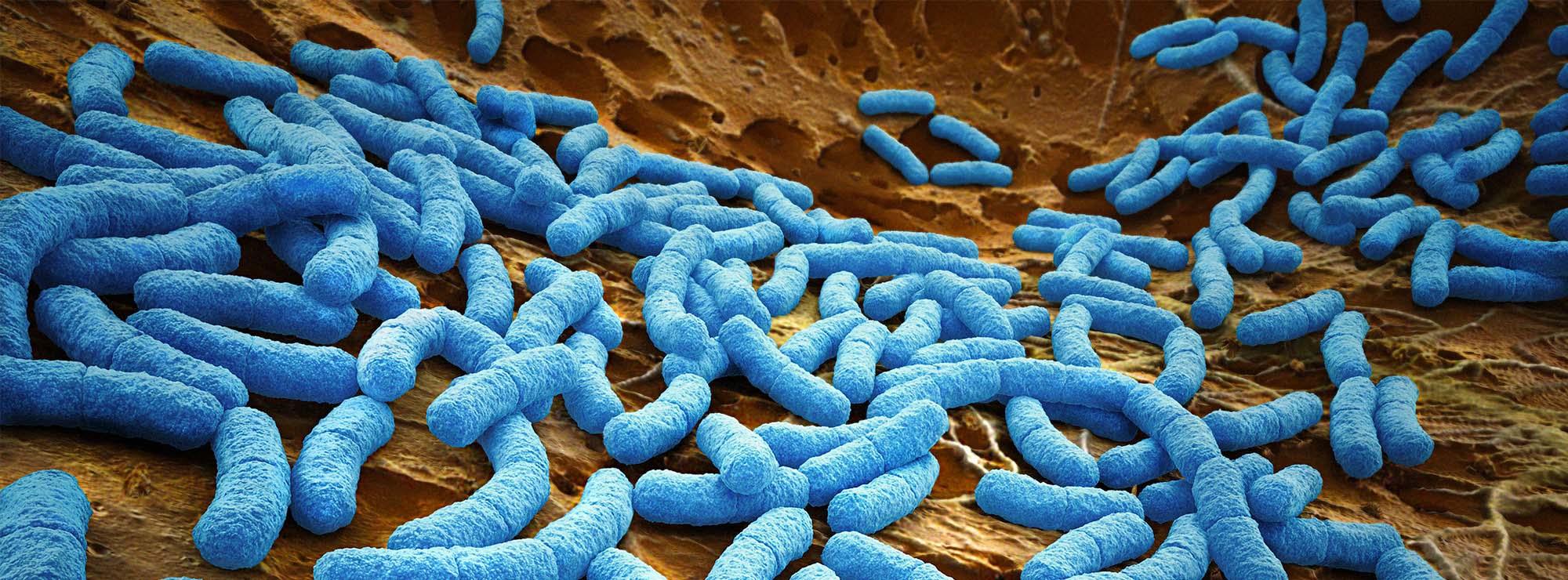 Scientists turn CRISPR into a genetic chainsaw to solve the antibiotics crisis – Fanatical Futurist by International Keynote Speaker Matthew Griffin