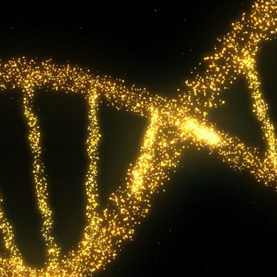 New gene editing technique switches off cells ability to repair themselves