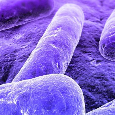 Promising 'Genetic Chainsaw in a pill' could solve the world's antibiotic crisis