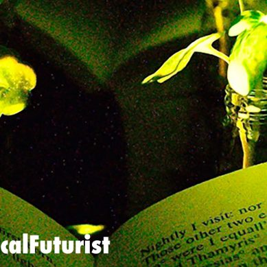 MIT breakthrough creates glowing plants that could replace street lights