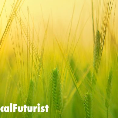 NASA inspired tech designed for outer space triples crop yields on Earth