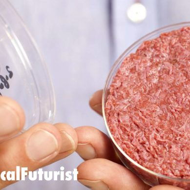 China spends $300million to buy lab produced meats from Israel